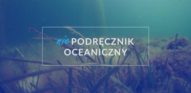Odc. 3: Czysty ocean